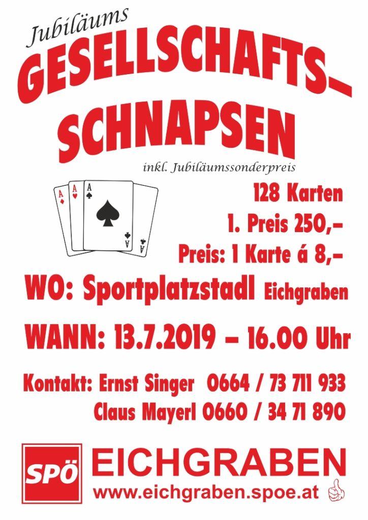 Gesellschaftsschnapsen SPÖ 2019