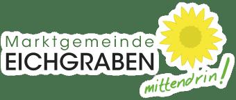 Gde Mittendrin Logo 340